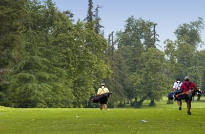 Cuestiones sobre la regla 2 de golf